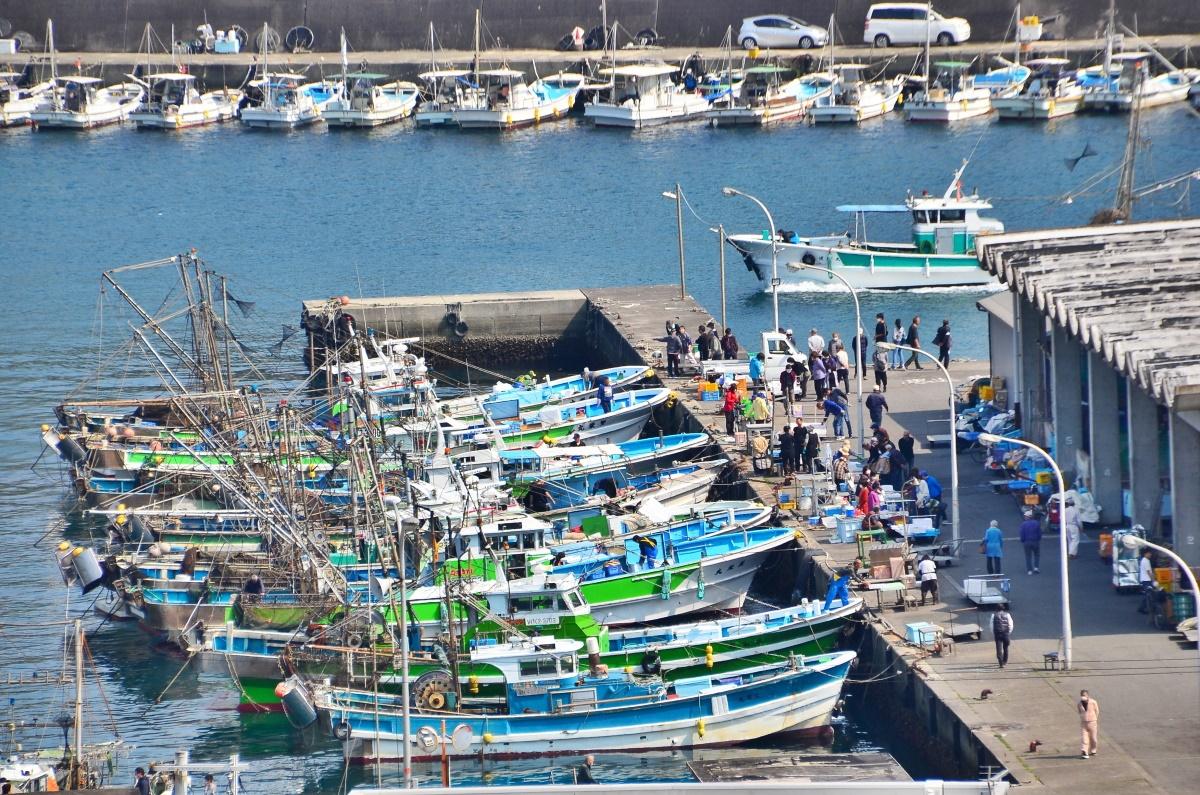 雑賀崎漁港で人気の「はた売り」とは