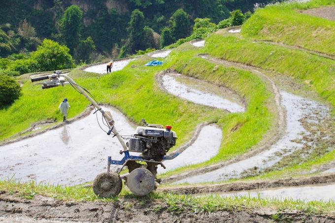 下赤阪の棚田を訪れるなら田植えの時期がおすすめ