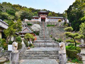 楼門から見下ろす絶景!和歌山県「和歌浦天満宮」は日本三菅廟