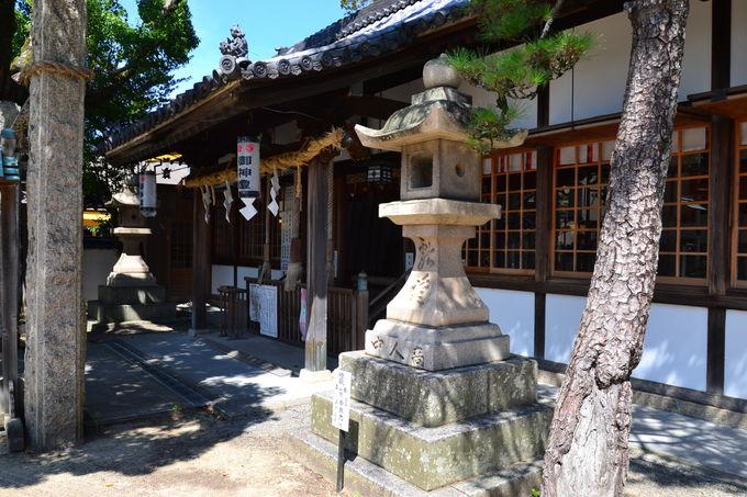 太公望の気分が体感できる茅渟神社の「ちぬみくじ」