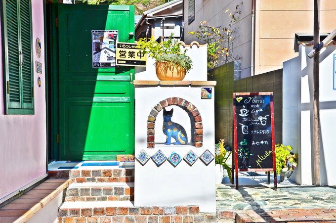 雑賀崎の新たな観光拠点「Gatto blu」とは