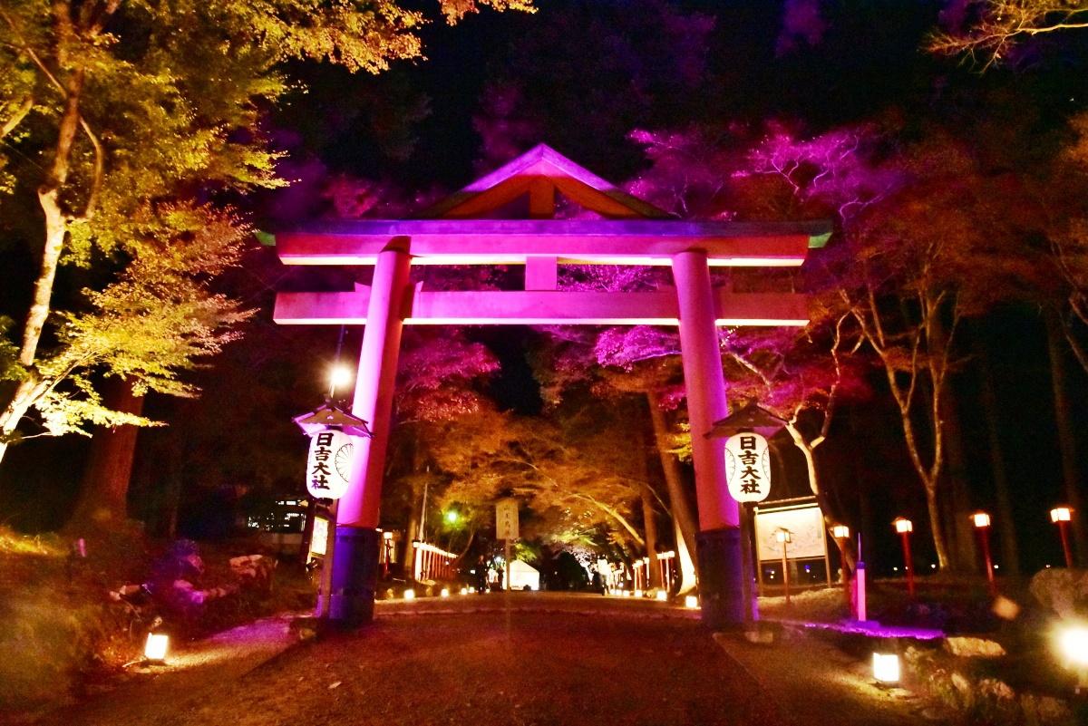 紅葉ライトアップも美しい!滋賀・坂本「日吉大社」もみじ祭り