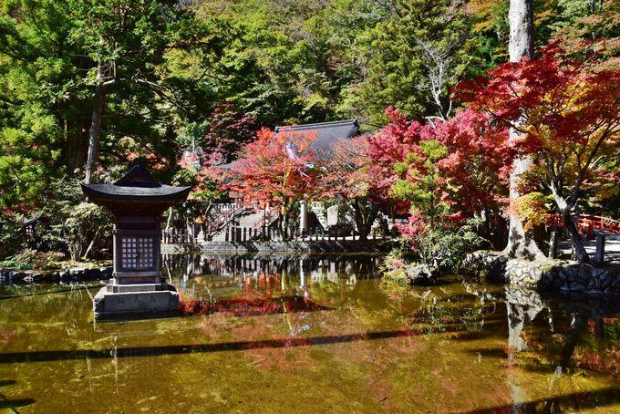 龍泉寺は洞川随一の紅葉スポット
