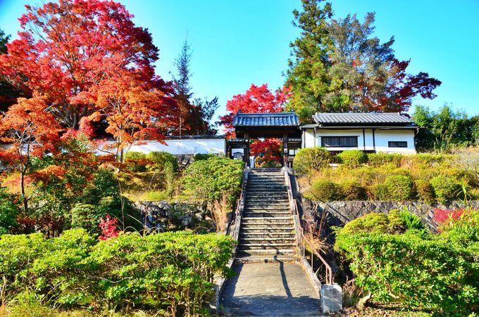 柳生家の菩提寺である「芳徳禅寺」