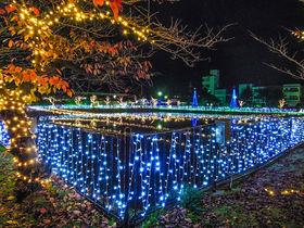 奈良県最大!天理市「光の祭典2020」で煌めきの世界へ