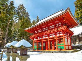 雪の天空の聖地!和歌山「高野山」で金剛峯寺と二大聖地を巡る旅