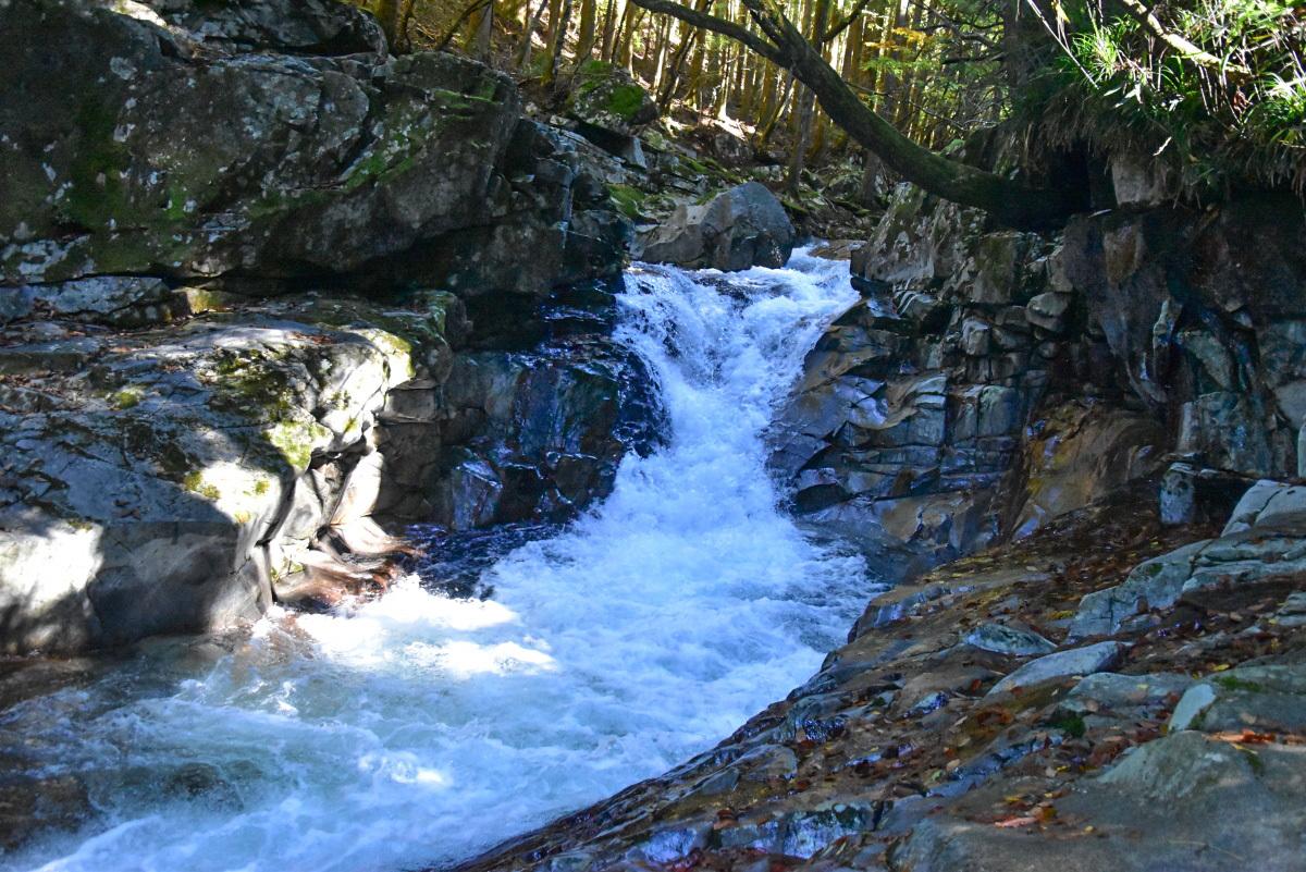 マイナスイオンたっぷり!山上川にかかる「河鹿の滝」