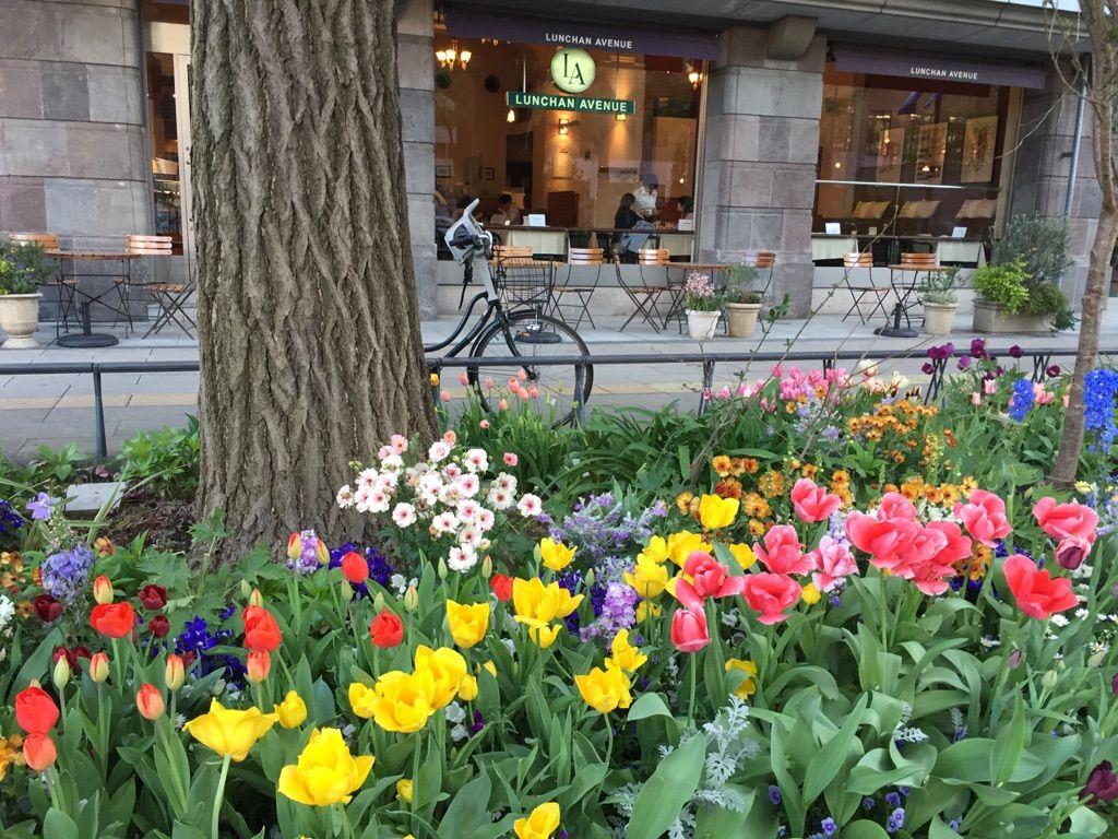 花と緑の饗宴!「第33回全国都市緑化よこはまフェア」