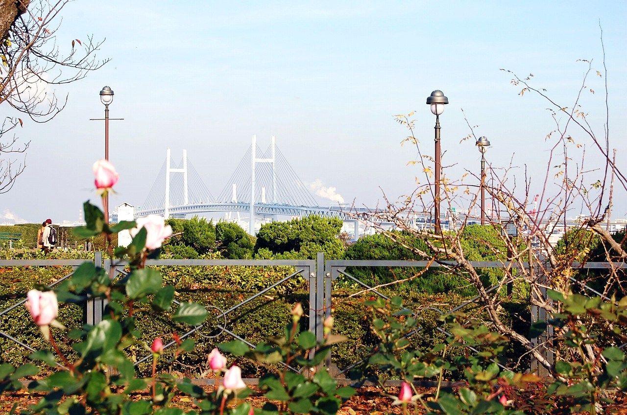 2日目ランチ:中華街ははずせない!〜港の見える丘公園へ