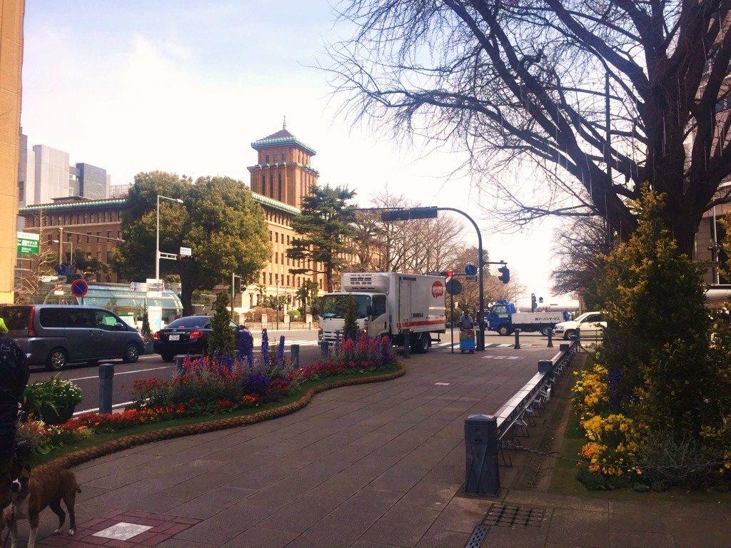 2日目午前:横浜は朝が最高!赤レンガ周辺〜日本大通りを散歩