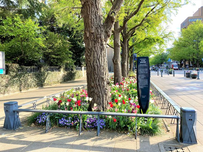 歴史と異国情緒溢れる「日本大通り」周辺