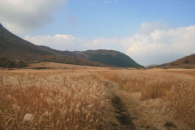 九重山の中枢「坊がつる湿原」