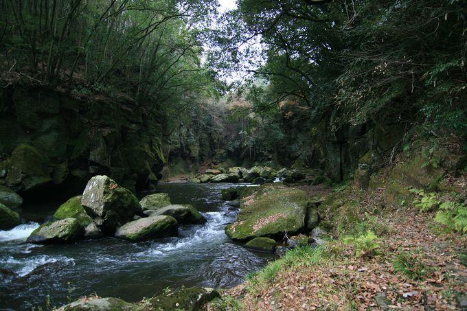 渓谷の底は、爽やかな癒しの場