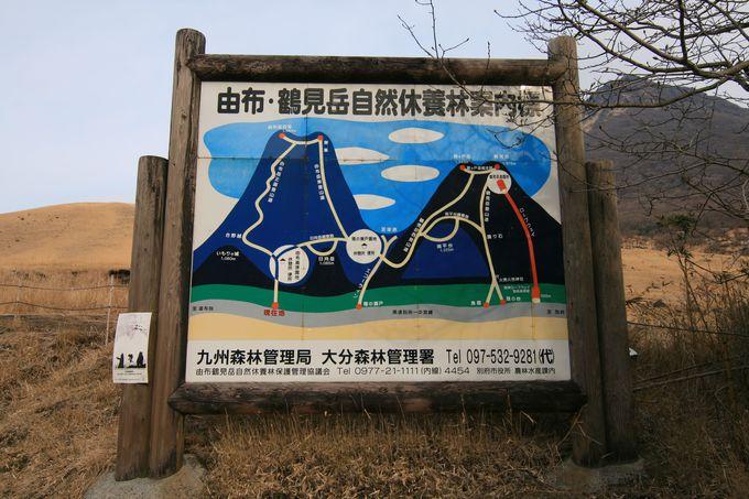 初心者に優しい由布岳登山