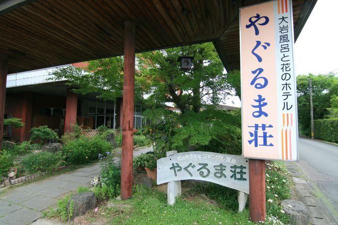 良泉が楽しめる宿「やぐるま荘」