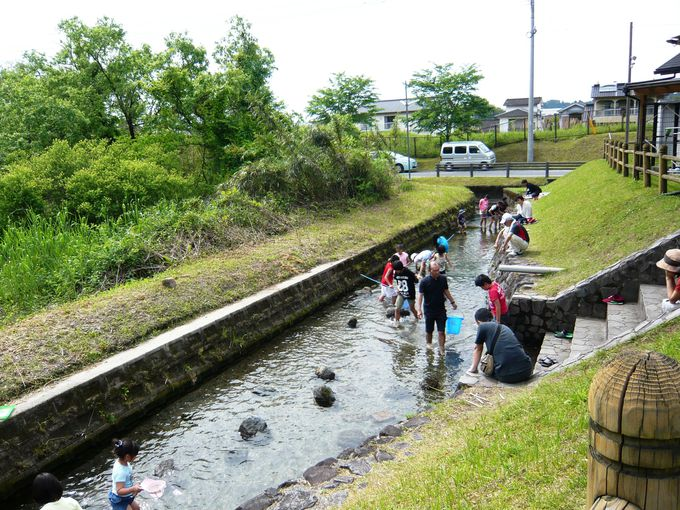 展望台や水遊び場で、撮り鉄さんも子どもたちも大満足!