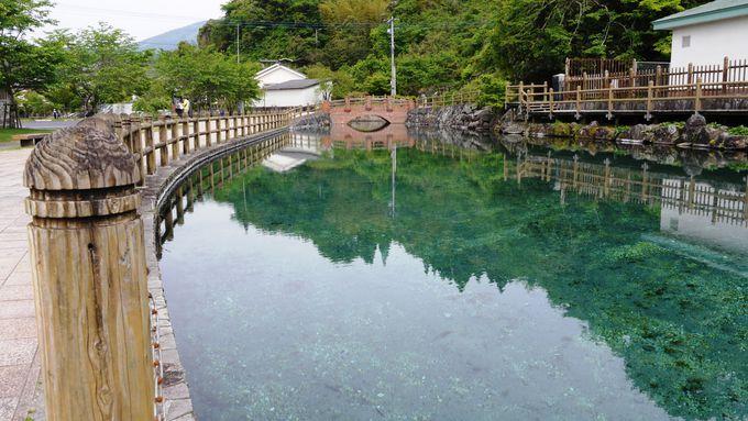名水「丸池湧水」のある町の名前は、その名もずばり「湧水町(ゆうすいちょう)」