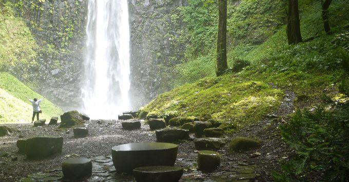 全身で滝と森のパワーを浴びよう
