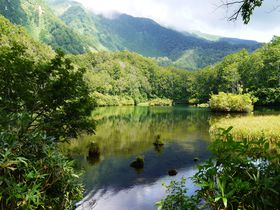 上から!間近で!東北の霊峰・鳥海山の麓にある神秘の池「鶴間池」