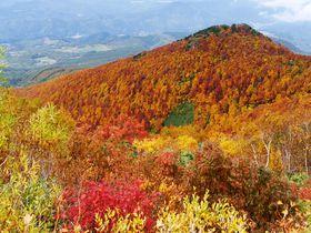 紅葉の大パノラマ!青森の名山「岩木山」のてっぺんを極める