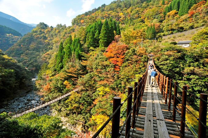 「あやとり橋」高さ35メートルからの絶景