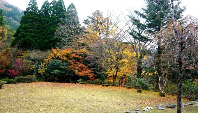 紅葉が映える朱塗りの能舞台