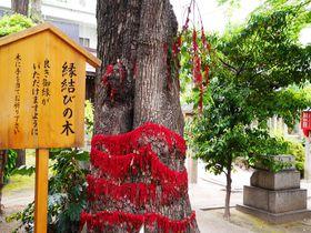 恋する乙女の強い味方!街中パワースポット名古屋大須「三輪神社」