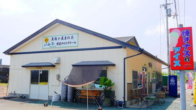 町おこしから生まれたお店「安芸グループふぁーむ」