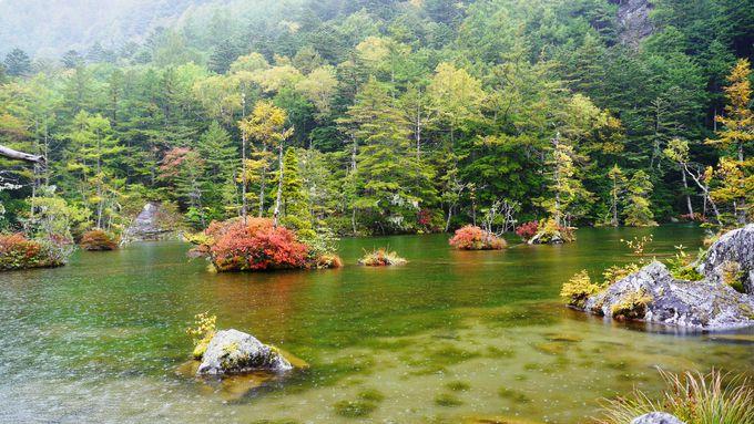 雨でさらに神々しい「明神池」