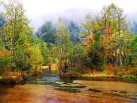 長野県「上高地」雨の日も楽しい5つのスポット!