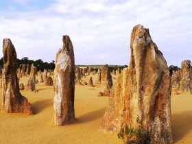 パースから3時間!荒野の墓標「ピナクルズ」砂漠に不思議な岩の塔