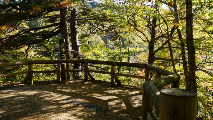 展望台から一の滝、二の滝、三の滝を眺めよう!