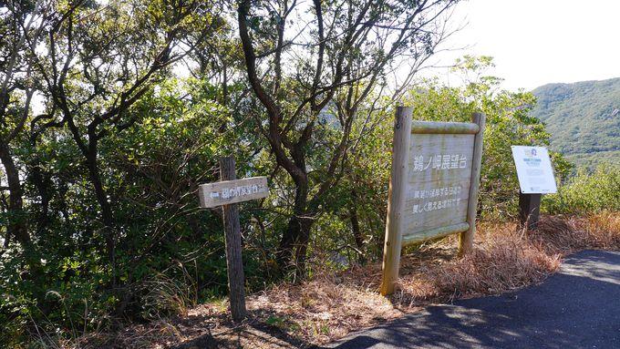 「鵜の岬展望台」は足摺岬から車で10分!