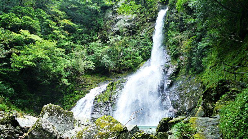 仁淀ブルーの名所・高知の「安居渓谷」で楽しむ清流、滝、伝説!