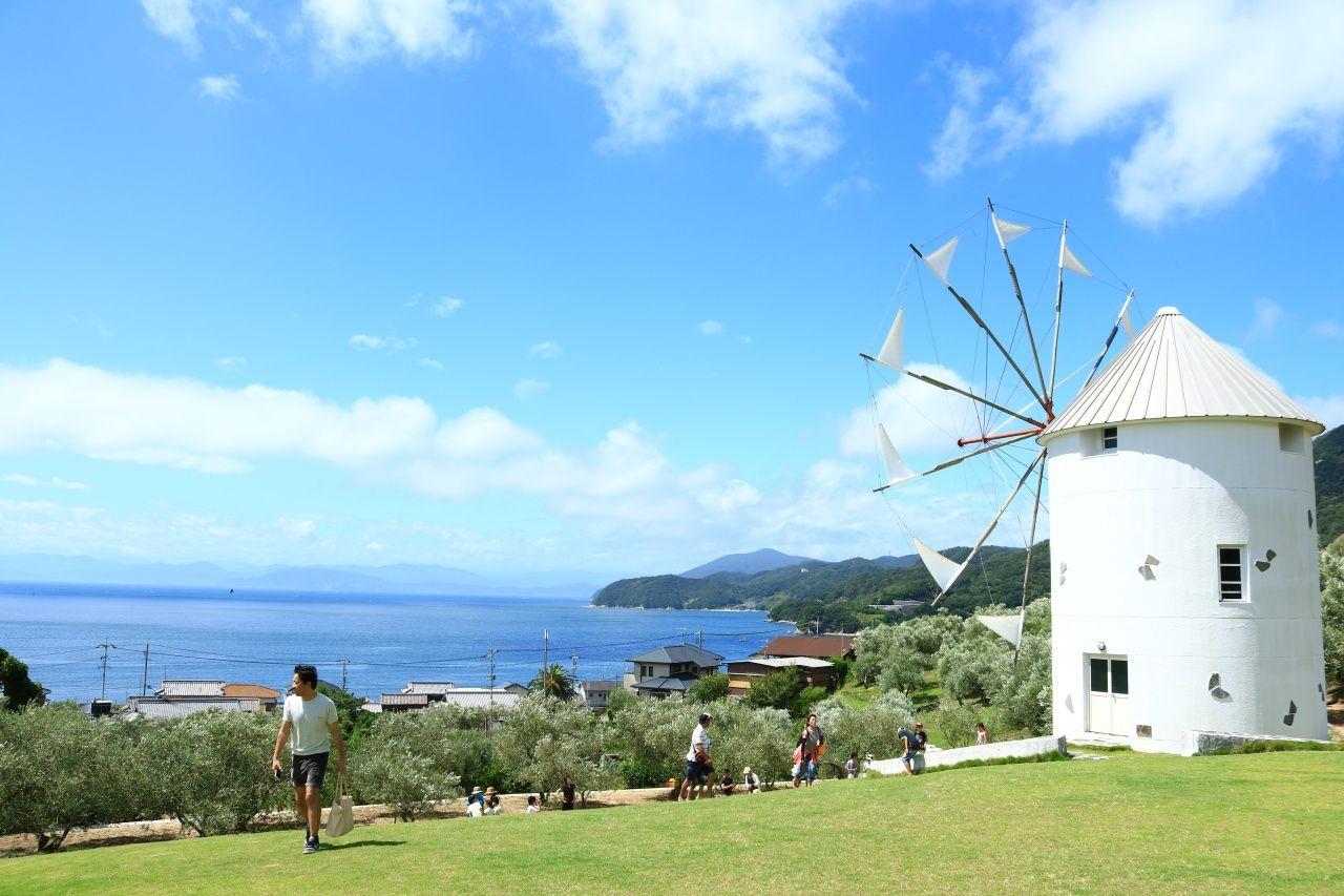 小豆島が地中海風リゾートに写る立役者「オリーブ畑」