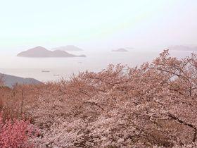 天空の鳥居から紫雲出山まで!うどん県・香川の絶景スポット5選