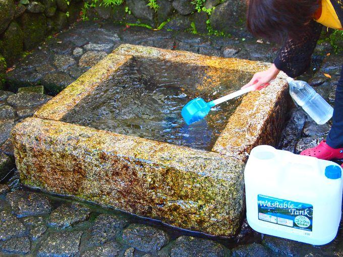 遠方からも水汲みに訪れる「加賀野八幡神社井戸」の自噴水