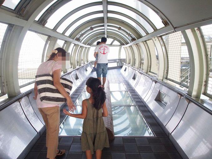 【舞子海上プロムナード】世界有数のつり橋の内部へ潜入!回遊式遊歩道はスリル満点!