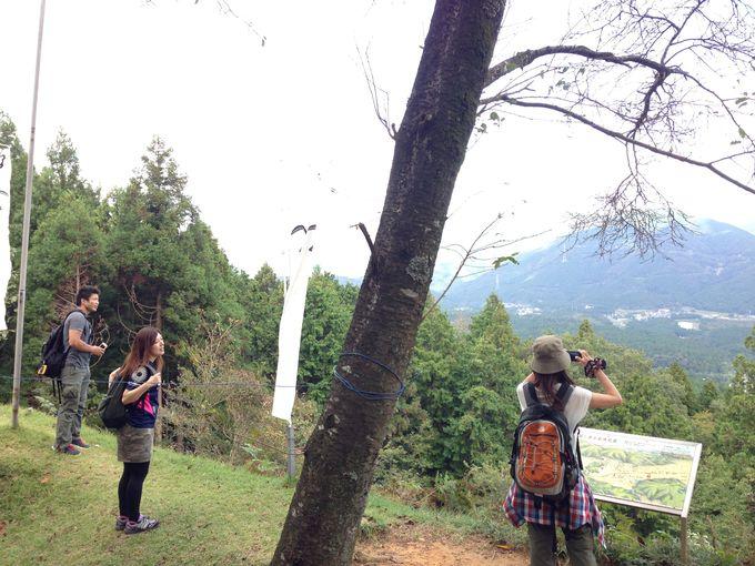 山頂は小早川秀秋が陣から戦況を眺めたという、絶好のロケーション!