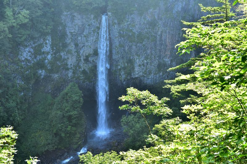 大白川露天風呂や滝見学もおすすめ