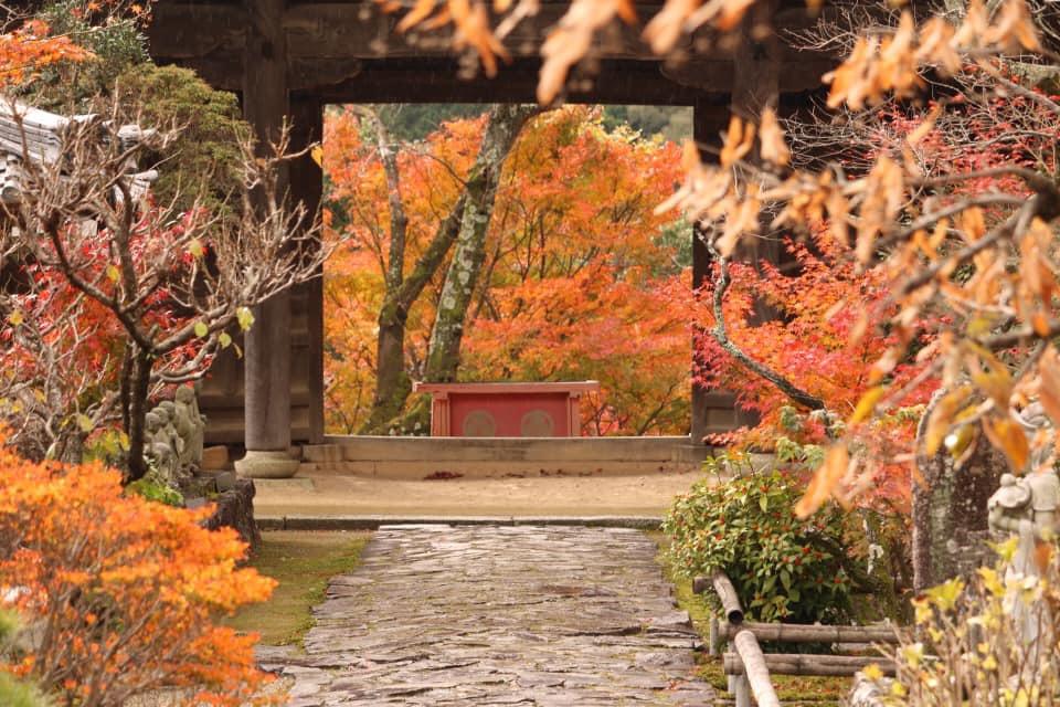 四季折々の顔も楽しむことが出る「行基寺」