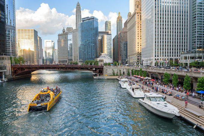 3. シカゴ・アーキテクチャー(建築)クルーズで圧巻の摩天楼を巡る