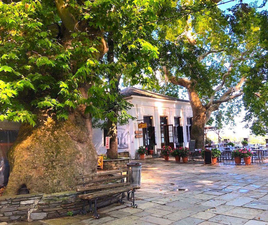 マクリニッツァの村で「ペリオンのバルコニー」に立つ