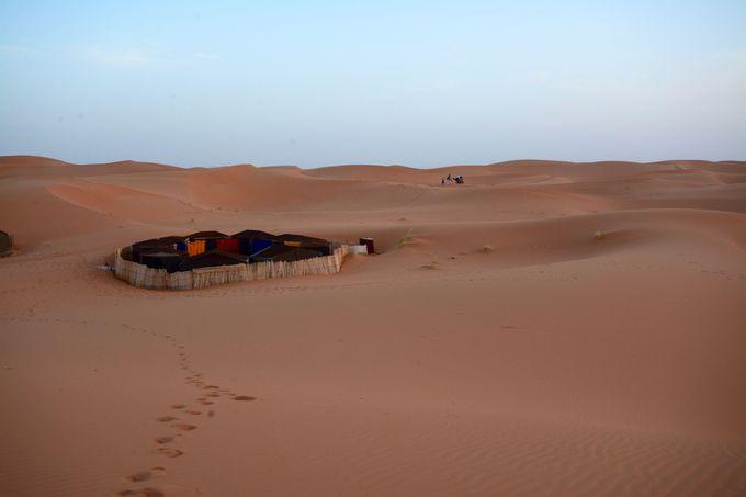 ラクダの背に揺られて、いざ砂漠のキャンプへ!