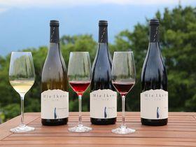 星野リゾート リゾナーレ八ヶ岳で進化した日本ワインに舌鼓
