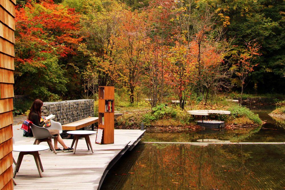 1.秋空の下で紅葉を眺めながら読書