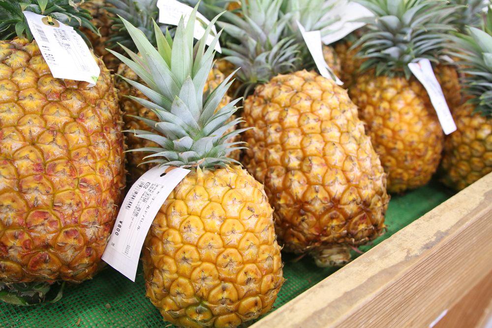 石垣島の恵みをそのまま持ち帰る農水産物&加工品