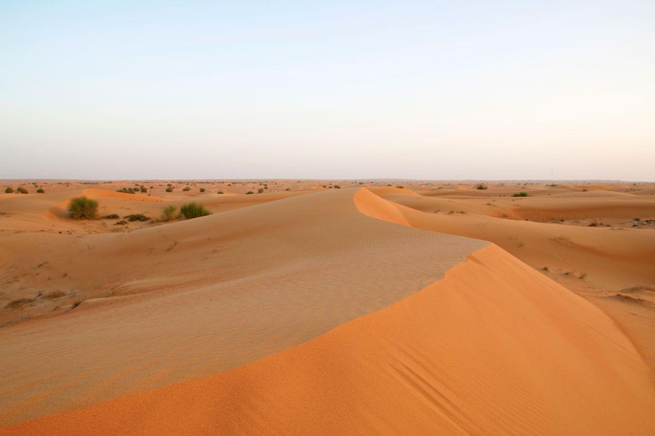 4.日本では経験できない砂漠・自然に出会える