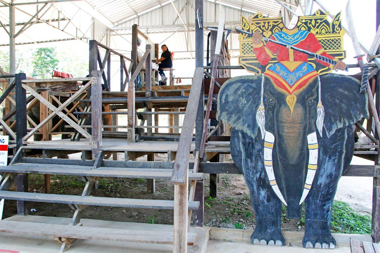 いよいよエレファント・トレッキングへ!象乗りを体験