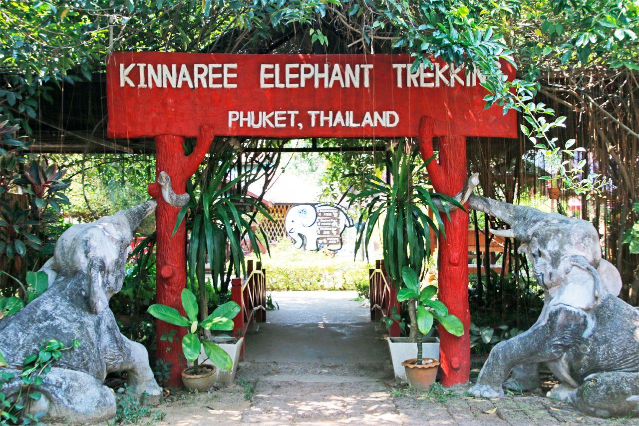 12:00〜:タイ観光の定番!象乗り体験へ
